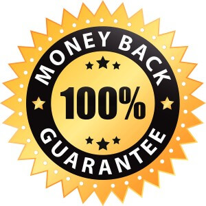 seo services guarantee